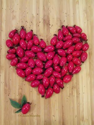 Kitchen garden blog. Rose hips heart.