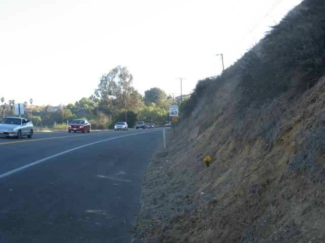 Carbon Canyon Chronicle: Carbon Canyon Road Fatal Accident Update