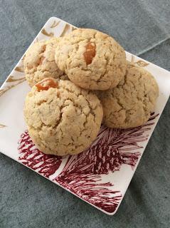 Apricot Coconut Gluten Free Vegan Cookies
