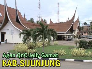 Agen QnC Jelly Gamat Melayani Kabupaten Sijunjung