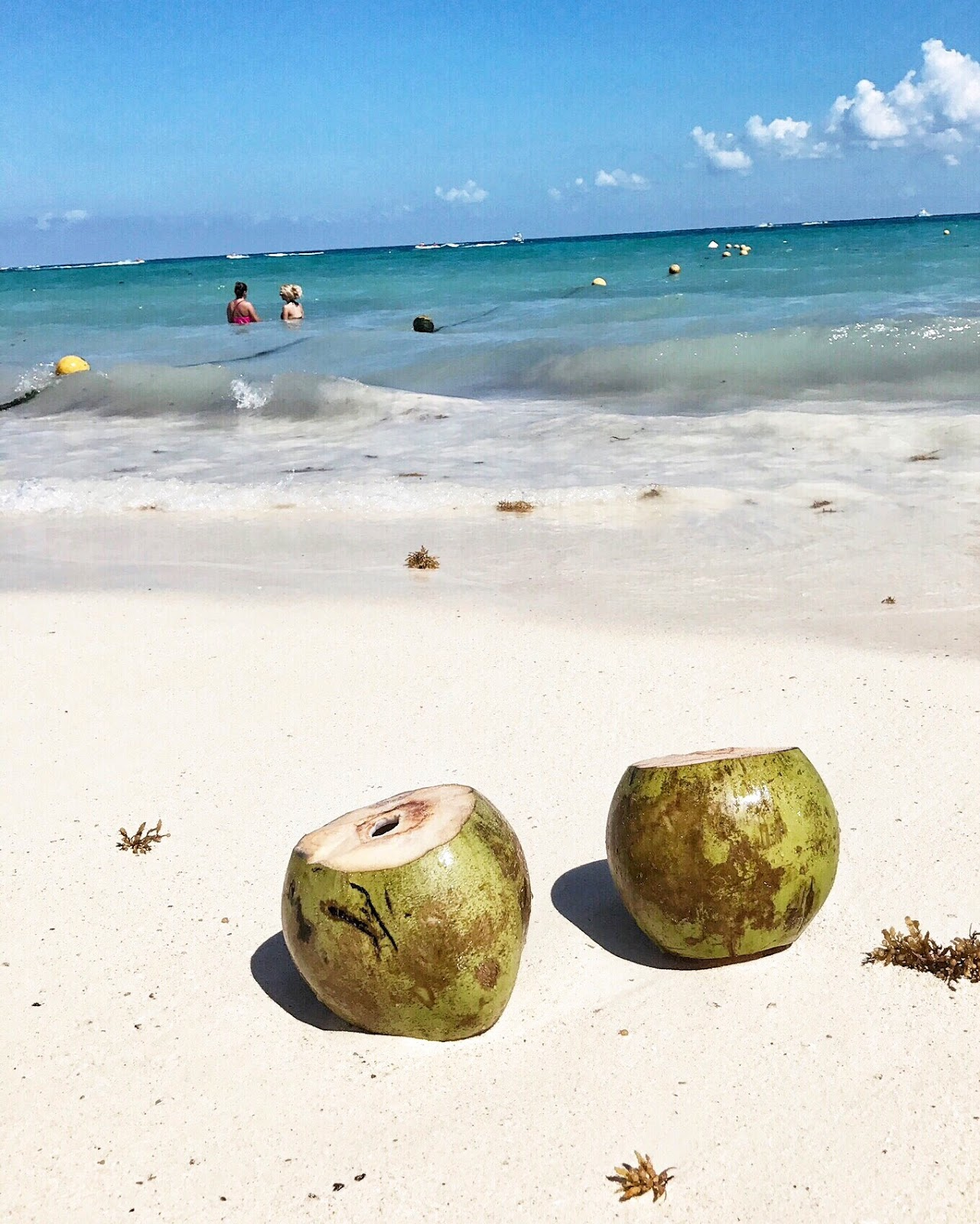 coconuts on the beach, playa del carmen, where to go to stay in playa del carmen, tropical vacation ideas, everyday pursuits, travel