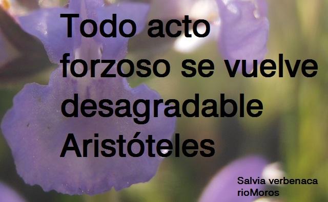 Todo acto forzoso se vuelve desagradable Aristóteles