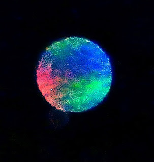 multicolored orb