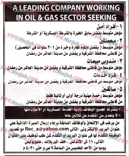 وظائف شركة تعمل فى مجال البترول والغاز بمحافظة الشرقية 11/3/2015