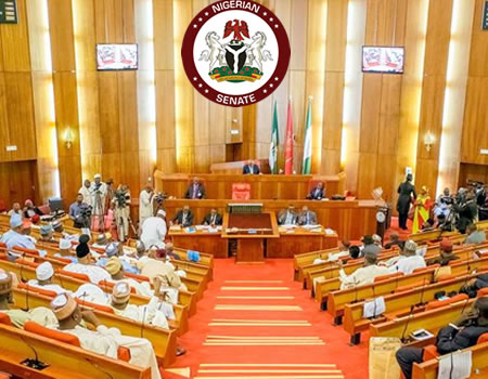 Senate asks Buhari to appoint seperate minister of power