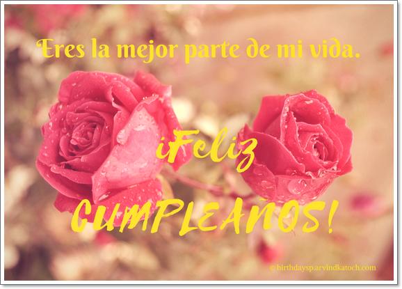 Tarjeta. cumpleaños, mejor, parte, vida, rosa,
