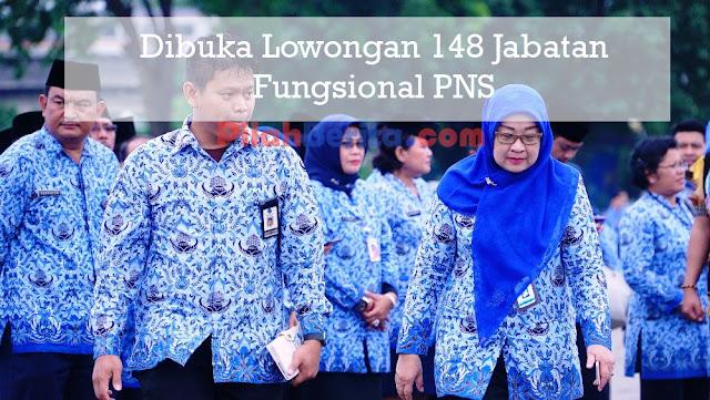 DIBUKA LOWONGAN 148 JABATAN FUNGSIONAL PNS, CEK INFONYA DISINI..
