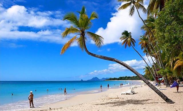 Plage des Salines avec sable et cocotier