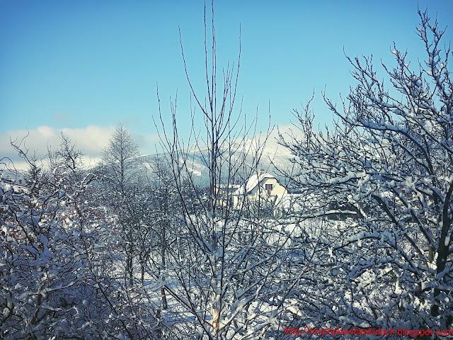 Miłośnicy Gór i Podróży zapraszają na zwiedzanie - Widok z okna na Górę Skrzyczne zimową porą