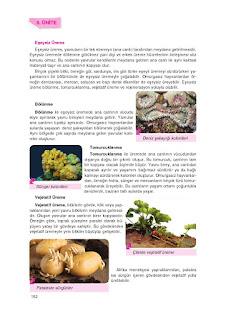 8. Sınıf Fen Bilimleri Ders Kitabı Cevapları Tutku Sayfa-153