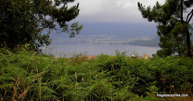 A Ría de Vigo avistada no caminho entre O Porriño e Redondela