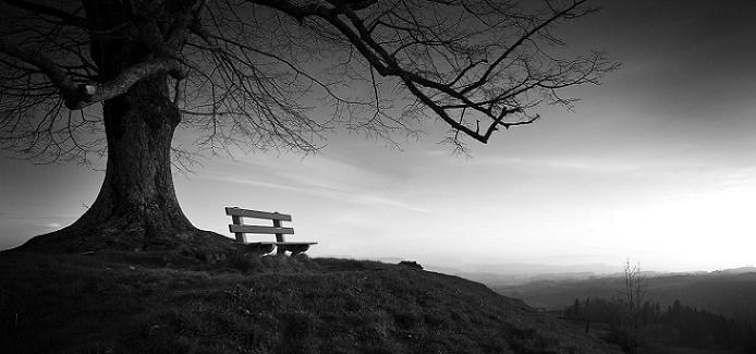 Auto Conhecimento: Solidão X Solitude