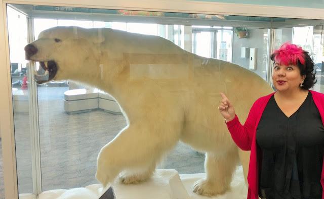 polar-bear-kenai-airport