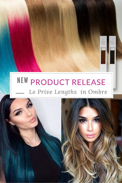 Ombre Clip In Hair Extensions by Le Prive