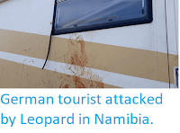 https://sciencythoughts.blogspot.com/2018/04/german-tourist-attacked-by-leopard-in.html