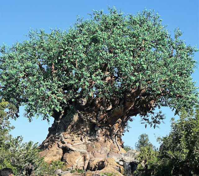 Disney World's Animal Kingdom