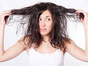Cara Merawat Rambut Kering dengan Minyak Zaitun
