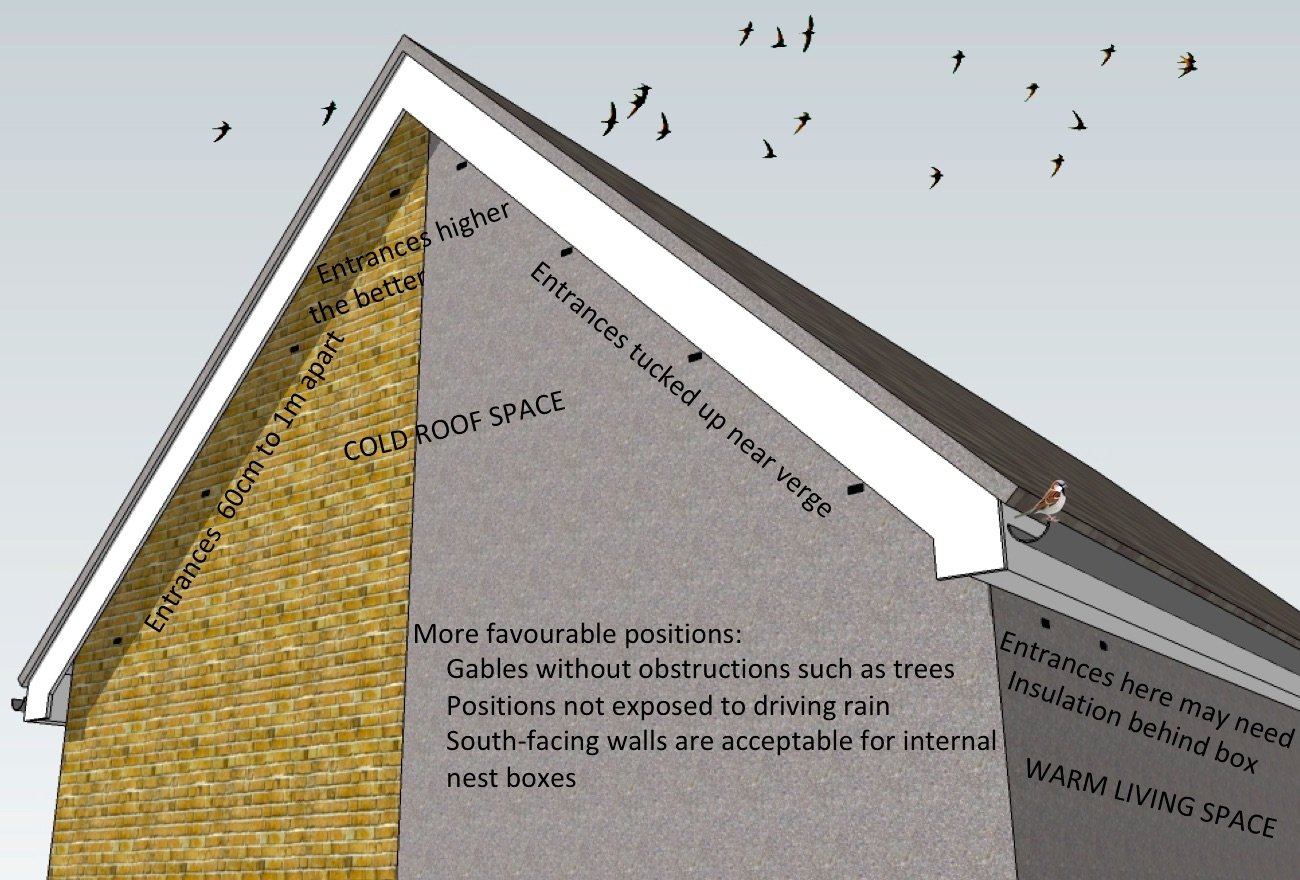 Residential bird box guidance