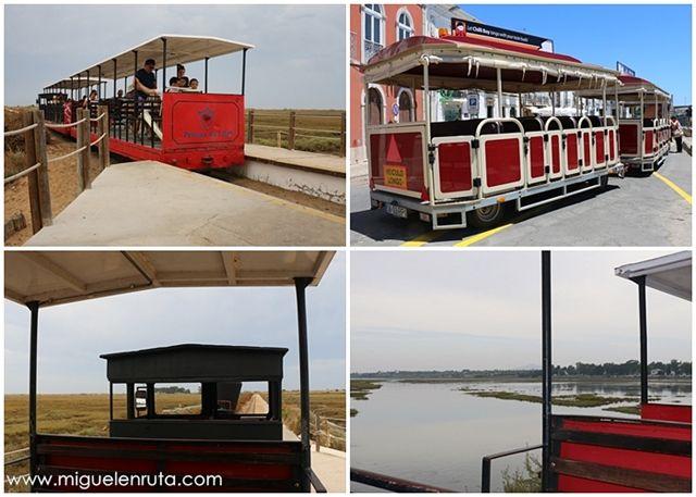 Tren-turístico-Algarve
