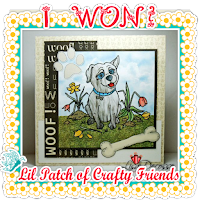 http://lilpatchofcraftyfriends.blogspot.ca/2016/04/lpocf-30-winners-top-3.html