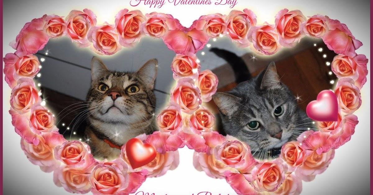 Happy Valentines Day TCC!