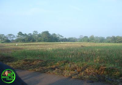 Tanggul Sementara Leuwi Nagka Jebol.. Petani Pagaden Barat, diperkirakan gagal nyawah