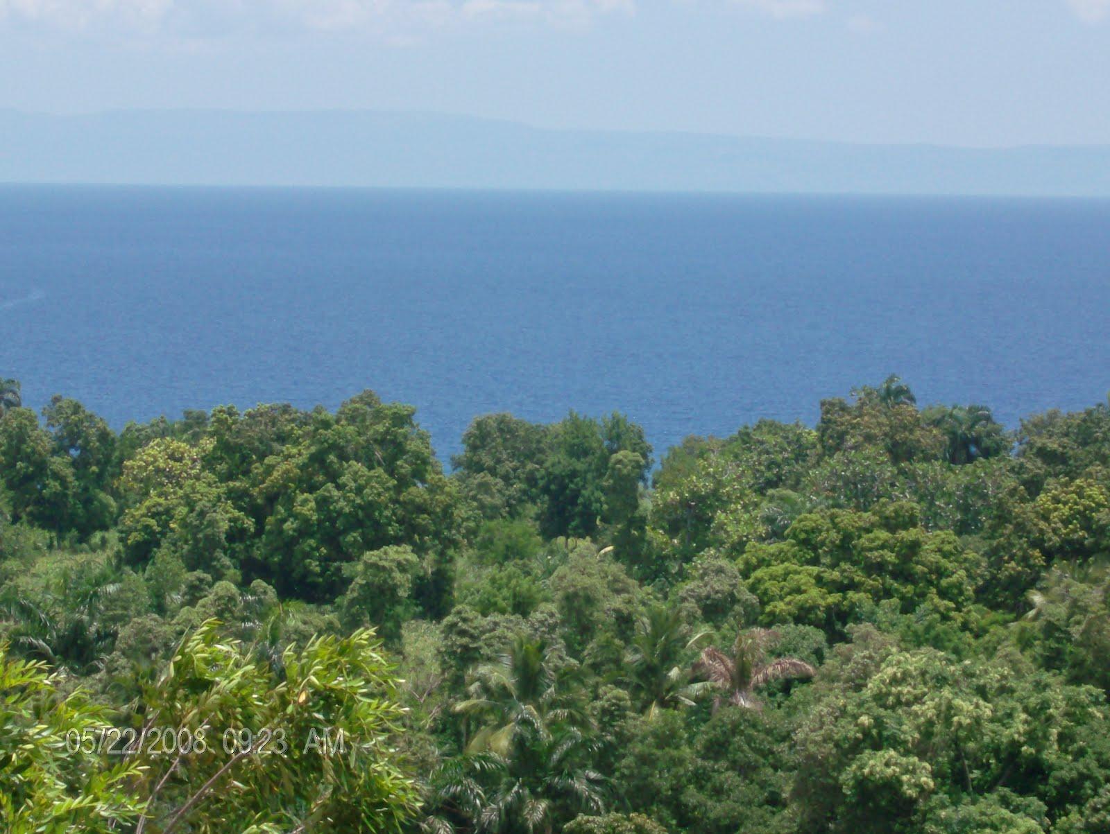 Sakpaselearnhaitiancreole Learn Haitian Creole Lessons Sa