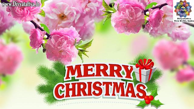 christmas wallpaper, cute  christmas wallpaper phone,  christmas wallpaper iphone,  hd christmas wallpapers 1080p