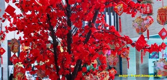 Pohon Angpao - Blog Mas Hendra