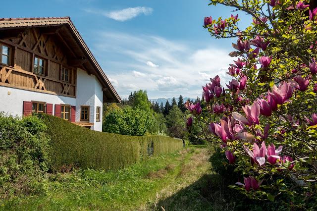 Moos-Rundweg Blaues-Land Murnau-staffelsee 10