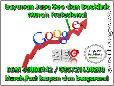 Jasa Seo dan Backlink Murah profesional