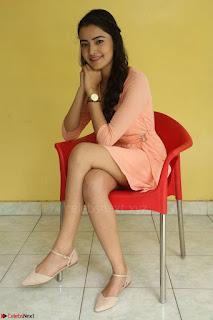 Rukshar Mir in a Peachy Deep Neck Short Dress 076.JPG