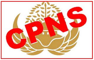 CPNS KKP 2017