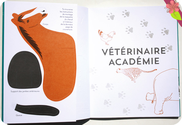 Vétérinaire Académie - Nathan