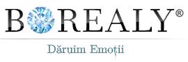 logo borealy