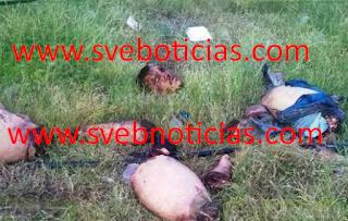 Arrojan cuerpo descuartizado en Apatzingán Michoacan este Domingo