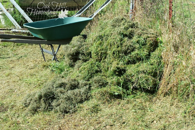 A pile of fresh grass clippings and other wastes can turn into rich soil.