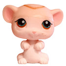 Littlest Pet Shop Special Mouse (#429) Pet