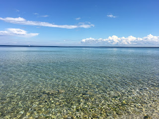 Nicole Rovig Clear View of Lake Michigan