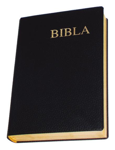Bibla, fjala e Zotit, Shkrimi