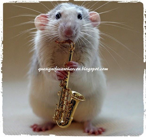 cual es significado de soñar con ratas