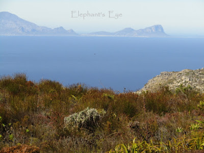 Silvermine to Cape Hangklip