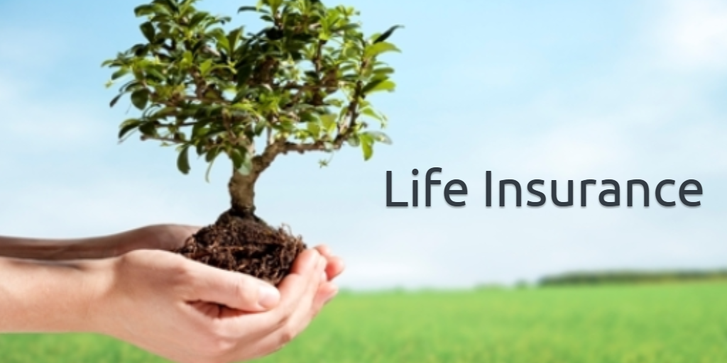 Importance of Life Insurance 1