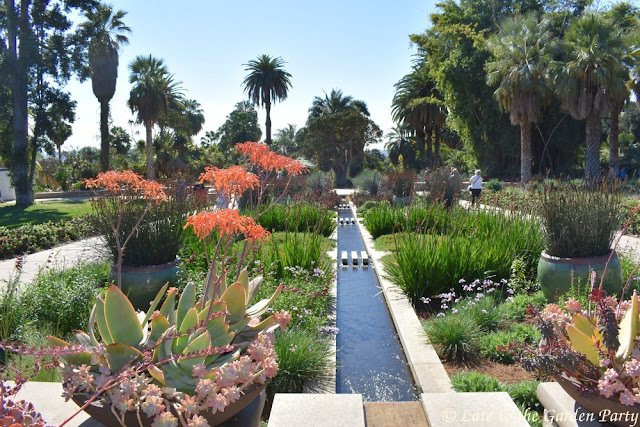 Late to the Garden Party: Winter Visit to The Huntington Gardens