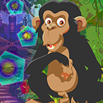 Games4King Chimpanzees Es…