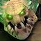 Como jugar con Underlord DOTA 2