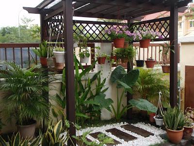 taman rumah minimalis mungil dengan taman gantung