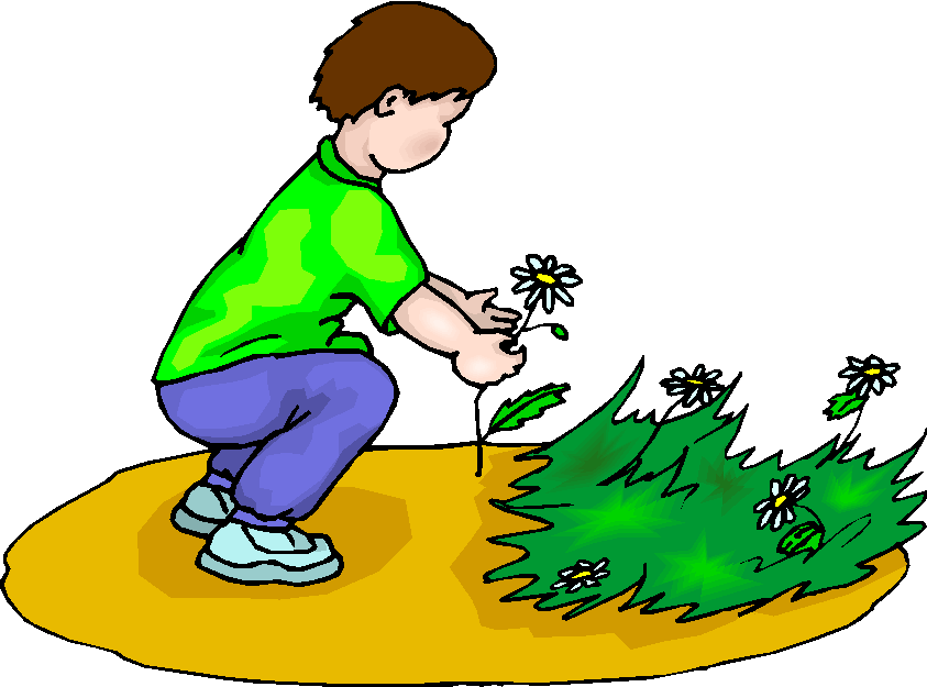 Boy Picking Flowers Free Clipart   Free Microsoft Clipart