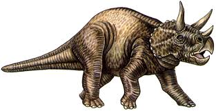 i dinosauri, il triceratopo