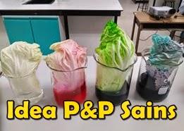 Idea P&P Sains - Hasil perkongsian rakan guru Sains di 'Cikgu Sains Kreatif'